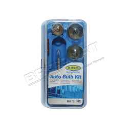 H1 TYPE SPARE BULB KIT