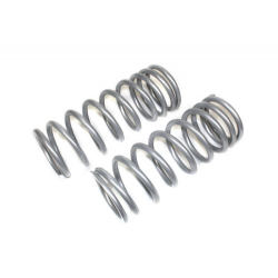 TERRAFIRMA LIGHT LOAD REAR SPRINGS (PAIR) 110/130